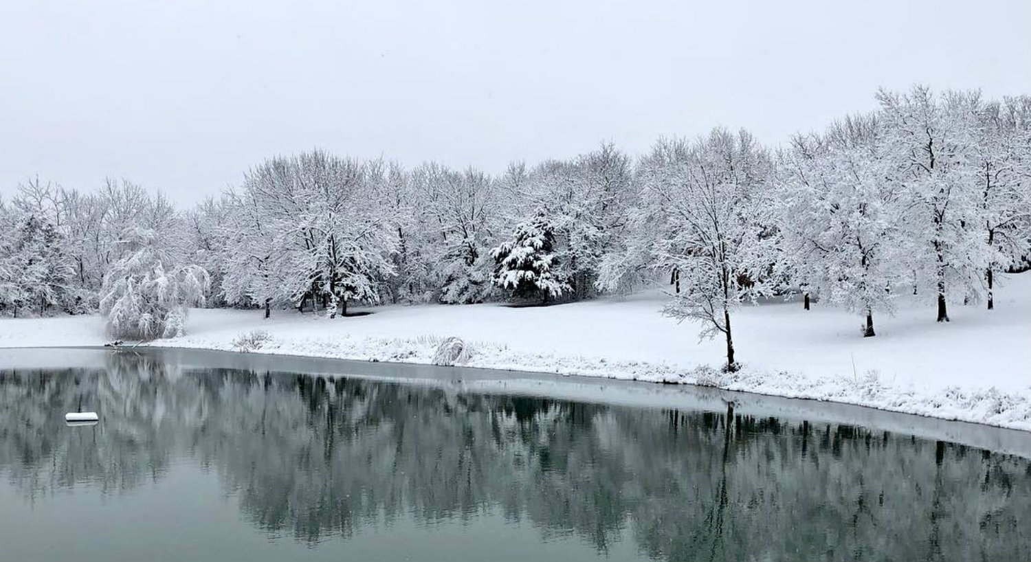 The pond surrounded by snow covered lawn and trees