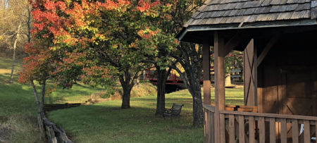 Green lawn with a park bench under a canopy of autumn colored trees