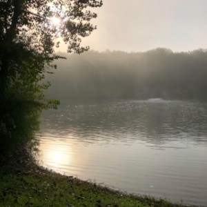 Sunrise over a small pond with the morning rising fog through the trees