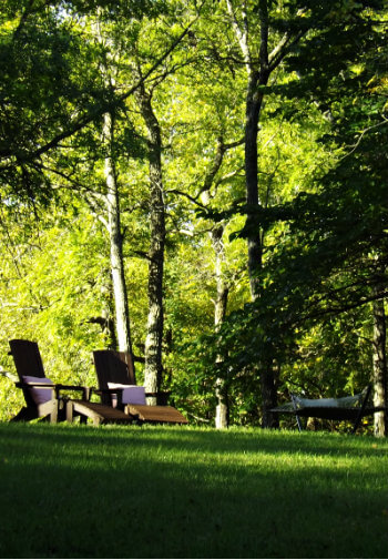 Green grassy lawn with two lounge chairs surrounded by tall trees